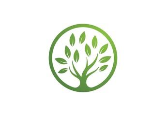 tree symbol and  icon logo design