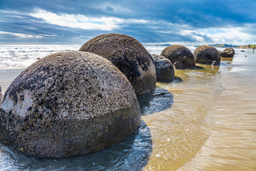 Boulders Moeraki -  spherical boulders
