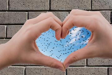 Flock of birds  seen behind a heart shaped hand