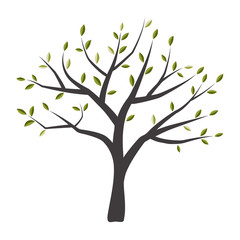 Vector tree with green leaves.