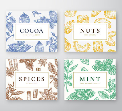 Hand Drawn Cocoa Beans, Mint, Nuts and Spices Cards Set. Abstract Vector Sketch Backgrounds Collection with Classy Retro Typography. Hand Drawn Cacao, Nuts, Mint Branches and Spices.