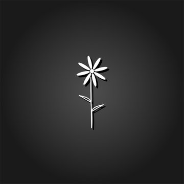 Chamomile icon flat. Simple White pictogram on black background with shadow. Vector illustration symbol