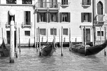 Wall Mural - Moored gondolas in The Grand Canal in Venice