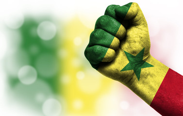 Flag of Senegal painted on male fist, concept of conflict