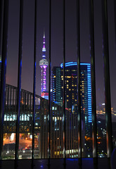 City view at night with Oriental Pearl Tower Shanghai, China