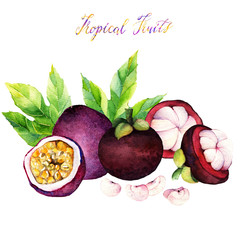 passion fruit. mangosteen. Hand drawn on white background. watercolor  illustration tropical fruit