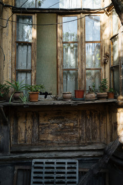 Old wooden window with flower pots
