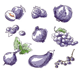 Assortment of purple foods, fruit and vegtables, vector sketch