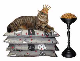 The cat in the gold crown lies on pile of pillows near a bowl of dry feed. White background.