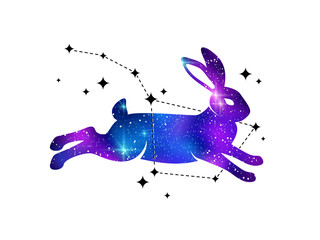 Rabbit and constellation of Ursa