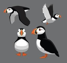 Bird Poses Atlantic Puffin Vector Illustration