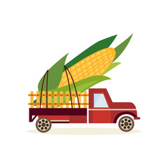 Farming harvest concept with big ear of corn in back of truck car isolated on white background - delivery of fresh healthy organic products in flat cartoon vector illustration.