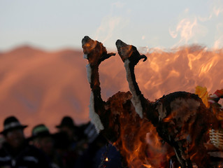 Llama fetus as part an offering  during a ceremony that marks the winter solstice, at the Tiahuanaco ruins