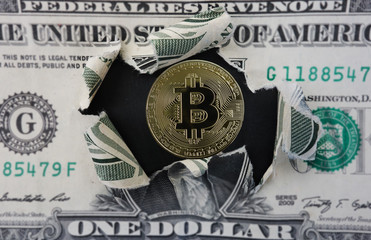 Bitcoin and dollar