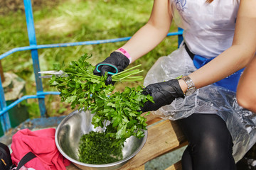 parsley in the hands of the Greens