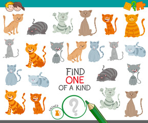 find one cat of a kind game for children