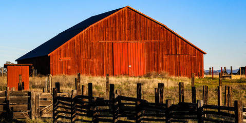 Red barn with morning sun