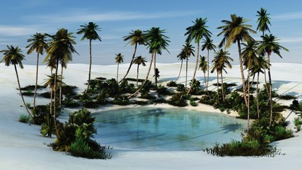 an oasis with palm trees in the sands, a desert with a pond,