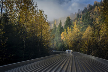 Train in autumn forest