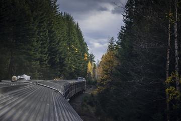 Train in autumn forest corridor