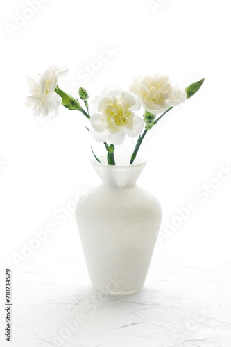White flowers on a white background bouquet of white carnations in white flowers on a white background bouquet of white carnations in a vase space mightylinksfo