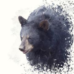 Black Bear portrait watercolor painting