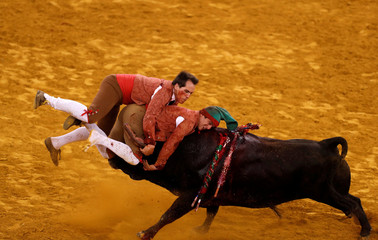 Members of Coimbra forcados group perform during a bullfight at Campo Pequeno bullring in Lisbon