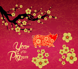 Chinese New Year design. Pig with plum blossom in traditional chinese background