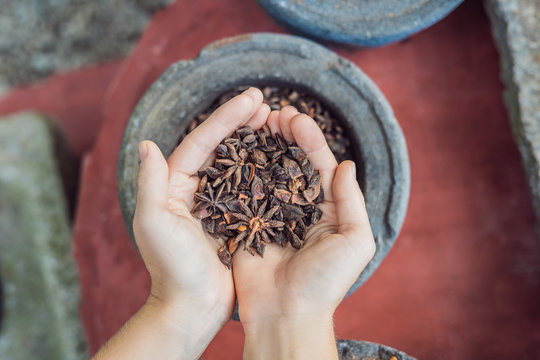 Badyan, anise in female hands against the backdrop of spices