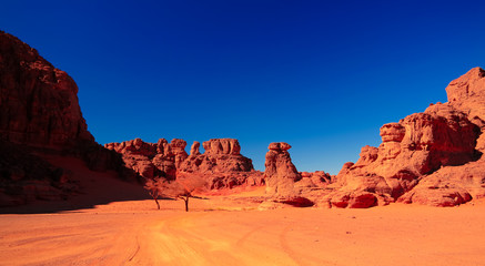 Landscape of sand dune and sandstone nature sculpture at Tamezguida in Tassili nAjjer national park, Algeria