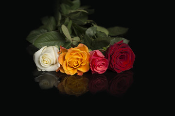 Four roses in a line