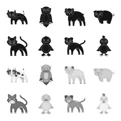 Entertainment, farm, pets and other web icon in black,monochrome style. Eggs, toy, recreation icons in set collection.