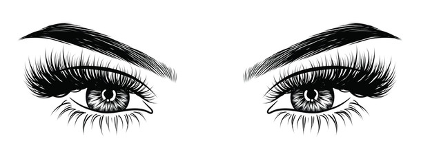 Hand-drawn woman's sexy makeup look with perfectly perfectly shaped eyebrows and extra full lashes. Idea for business visit card, typography vector. Perfect salon look Wall mural