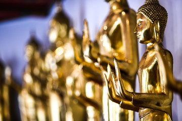 Buddha statues at a temple in Thailand