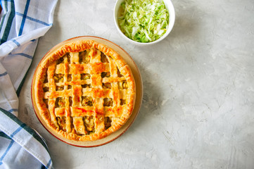 Homemade young cabbage pie from flaky dough  served on a plate. White stone background.
