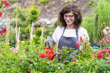 Lächelnde Floristin beim gießen der Rosen