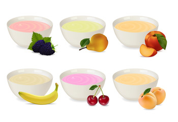set of yogurts in a porcelain plate with different fruits. Blackberry, pear, cherry, peach, apricot, yogurts. Realistic style. Vector illustration.