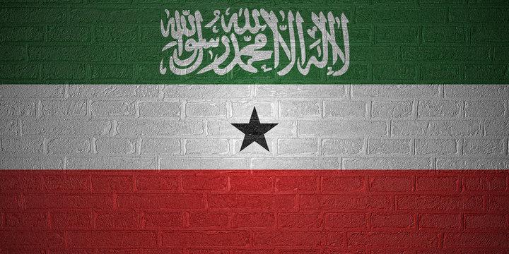 Flag of Somaliland on brick wall background, 3d illustration