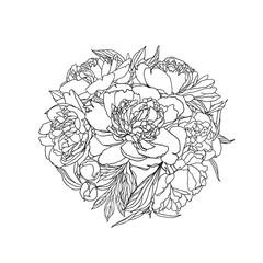 Linear bouquet of peony flowers