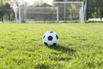 Football in grass in front of goal