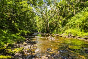 River Neath, Wales, UK