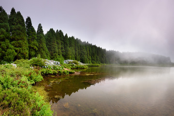 Panoramic landscape from Azores lagoons. The Azores archipelago has volcanic origin and the island of São Miguel has many lakes formed in craters of ancient volcanoes.
