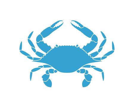 Blue crab. Logo. Isolated crab on white background