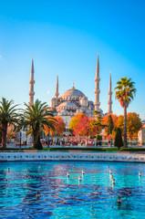 Foto op Aluminium Turkije The Blue Mosque, (Sultanahmet Camii), Istanbul, Turkey.