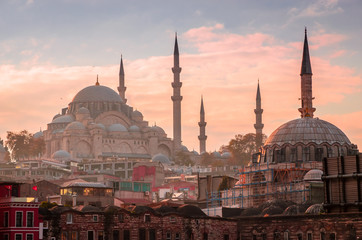 Photo sur Toile Turquie Suleymaniye mosque in Istanbul, Turkey