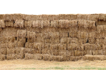 straw background, straw block cube wall, row pile straw dry, hay isolated white background, straw for decoration event country cowboy style concept idea farm