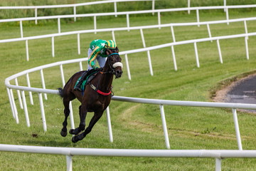 Single race horse and jockey racing on the track