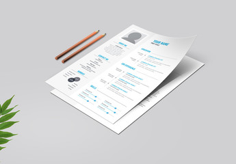 Blue and Light Gray Resume Layout