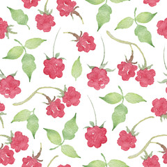 Watercolor Seamless Pattern with Raspberry Isolated on White Background
