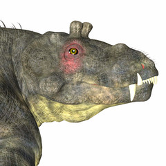 Estemmenosuchus uralensis Dinosaur Head - Estemmenosuchus uralensis was an omnivorous therapsid dinosaur that lived in the Permian Period of Russia.